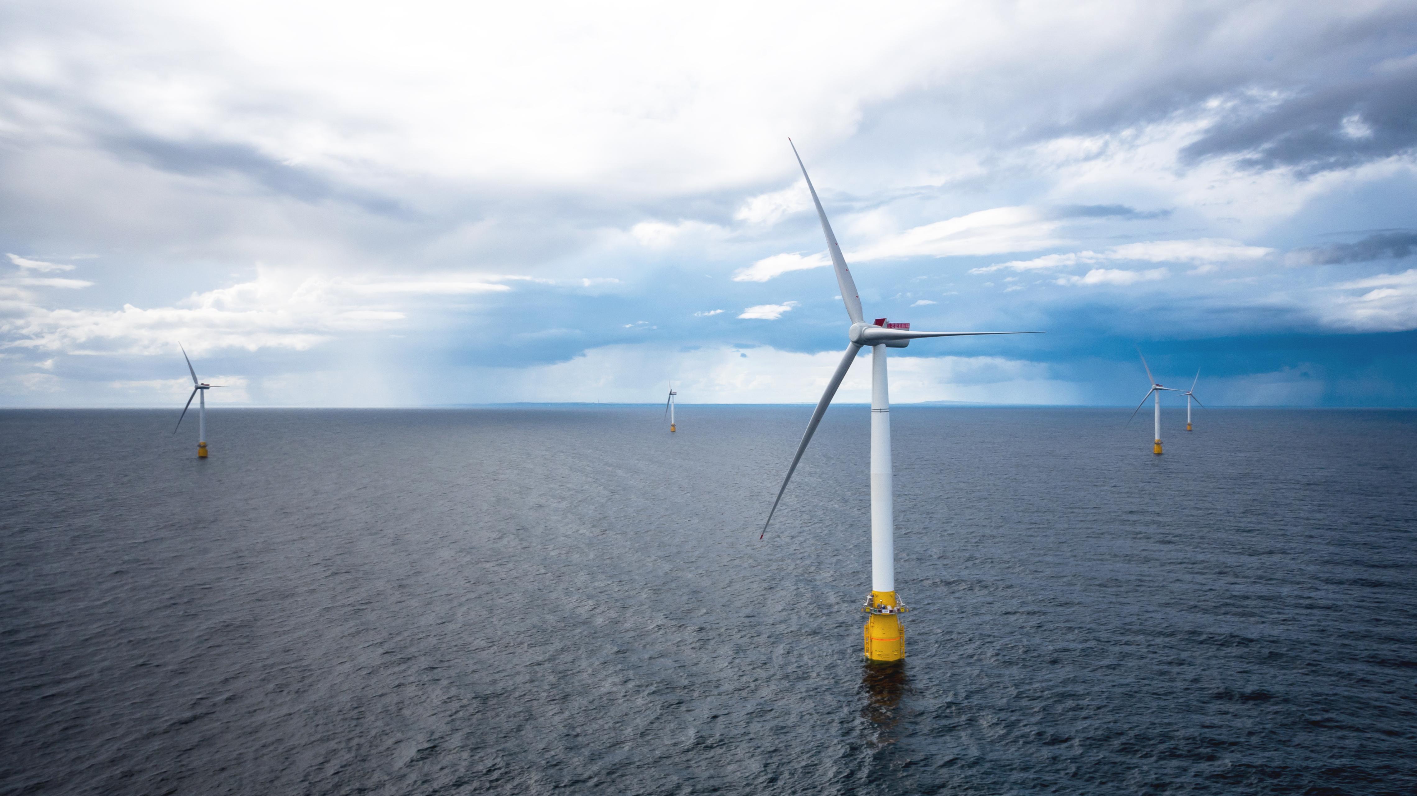 Wind Turbine Seals